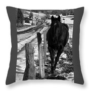 Towing The Line Throw Pillow