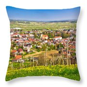 Town Of Ivanec Aerial Springtime View Throw Pillow