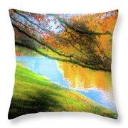 Town Pond Throw Pillow