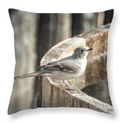 Townsends Solitaire Throw Pillow