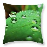 Traces Of Rain Throw Pillow