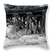 Trackin' The Past Throw Pillow