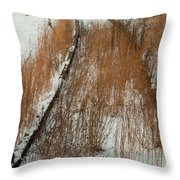 Tracks To The Past Throw Pillow