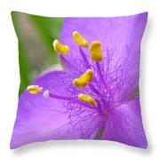 Tradescantia Andersoniana Throw Pillow