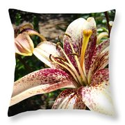 Traditional Art Lily Flowers Floral Garden Baslee Troutman Throw Pillow