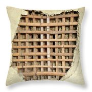 Traditional Bamboo Mud Wall Construction Throw Pillow