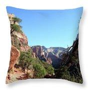 Trail - Zion Park Throw Pillow