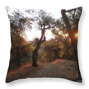 Trail At Sunrise Throw Pillow