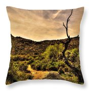 Trail Guardian No. 2 Throw Pillow