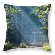 Trail In Morning Light Throw Pillow