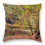 Trail In Tonty Canyon Throw Pillow