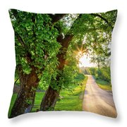 Trail Into Sunset Throw Pillow