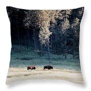 Trail Of Bulls Throw Pillow