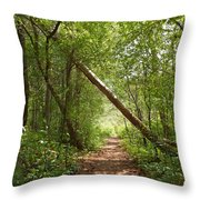 Treasure Trove Throw Pillow