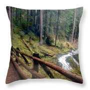 Trail Over Sol Duc Falls Bridge In Olympic National Park Throw Pillow