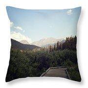 Trail Ridge Road Throw Pillow