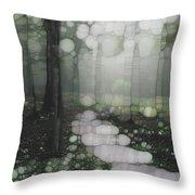 Trail Series 5 Throw Pillow