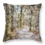 Trail Series Throw Pillow