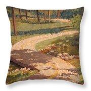 Trail Shadows Throw Pillow