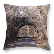 Trail Through History Throw Pillow