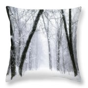 Trail Through The Winter Forest Throw Pillow