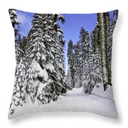 Trail Through Trees Throw Pillow by Garry Gay