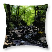 Trail To Chimney Top Throw Pillow