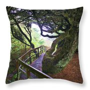 Trail To Copalis Beach Throw Pillow
