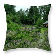 Trail To The Cabin Throw Pillow