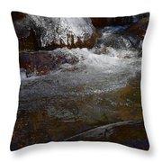 Trail To Tokopah Falls Throw Pillow