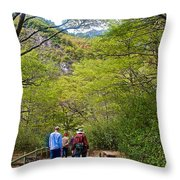 Trail To Waterfall In Vicente Perez Rosales National Park Near Puerto Montt-chile Throw Pillow