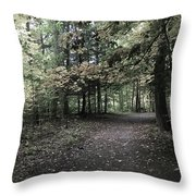 Trail Walking  Throw Pillow