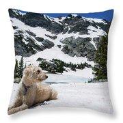 Traildog In Snow At Missouri Lakes Throw Pillow