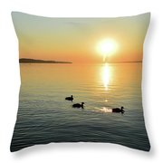 Trailing Sparkles Two  Throw Pillow