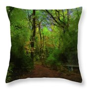 Trailside Bench Throw Pillow