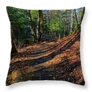 Train On The Adirondack Log Keene Valley Ny New York Throw Pillow