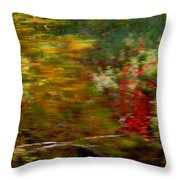 Train Ride Colors Throw Pillow