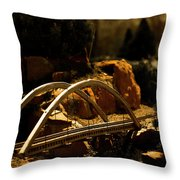 Train Trestle Throw Pillow