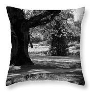 Tralee Town Park Ireland Throw Pillow