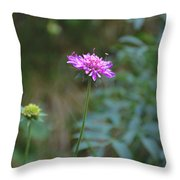 Tramonti Di Sotto Throw Pillow