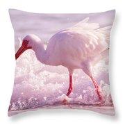 Tranquil Beauty Cortez Beach Throw Pillow
