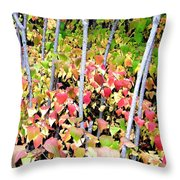 Tranquil Days Of Autumn Throw Pillow