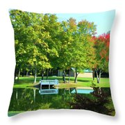 Tranquil Landscape At A Lake 4 Throw Pillow