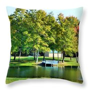 Tranquil Landscape At A Lake 8 Throw Pillow