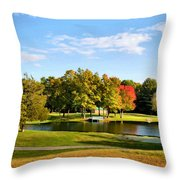 Tranquil Landscape At A Lake 9 Throw Pillow