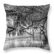 Tranquil May 2016 Bw Throw Pillow