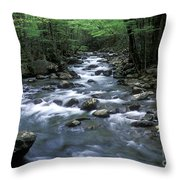 Tranquil Moments On Little Pigeon Creek Throw Pillow