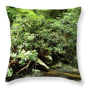 Tranquil Mountain Laurel Stream In The Great Smoky Mountains National Park Throw Pillow