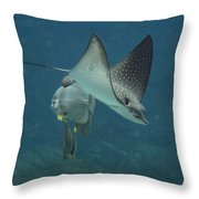 Tranquil Sea Creatures Throw Pillow