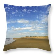 Tranquil Seashore Throw Pillow